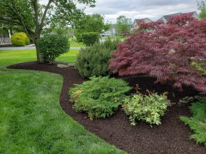 DREAMscape Outdoors - Hanover Landscaping